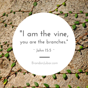 vines and branches